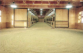Agricultural Horse Barns Kennels And Riding Arenas Paul Foley Electric